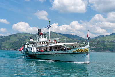 Paddlewheeler on Lake Thun