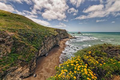 Pt. Reyes Coastline