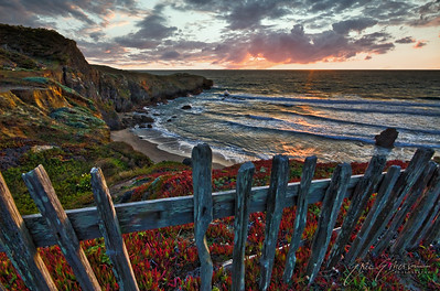 Sea Ranch Cove at Sunset