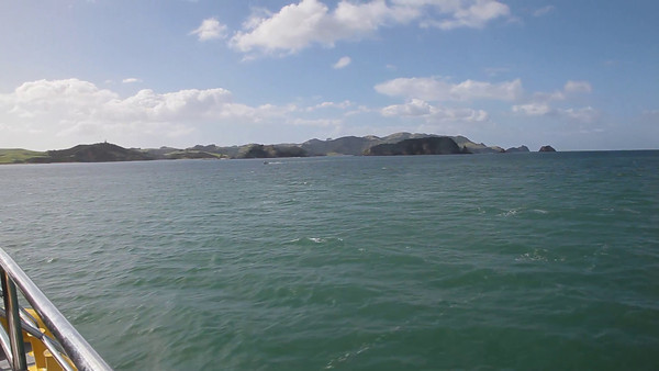 Bay of Islands Cruise, Paihia, NZ (5D0_8506)