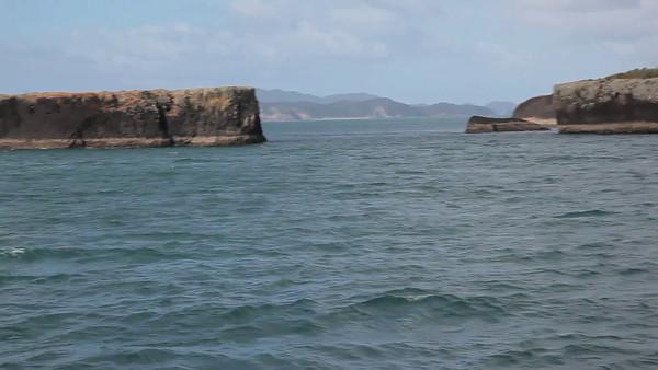 Bay of Islands Cruise, Paihia, NZ (5D0_8516)