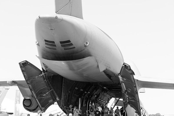 Shark Plane