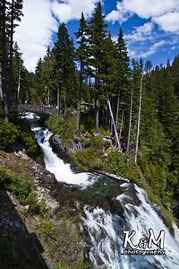 Alaska Trip Day (2) (16 of 43)
