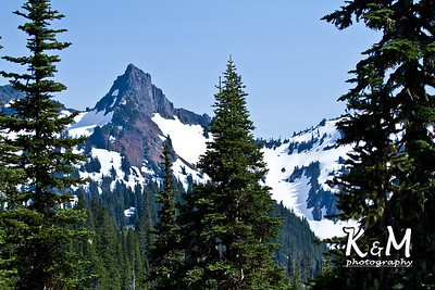Alaska Trip Day (2) (31 of 43)