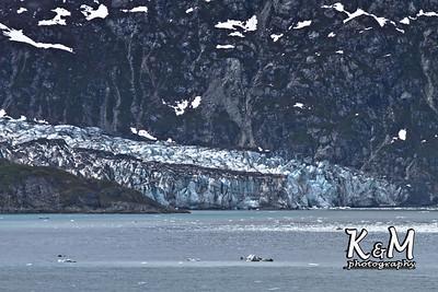 Alaska Trip Day (6) (14 of 54)