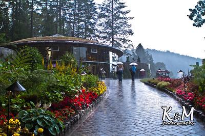 Alaska Trip Day (9) (25 of 32)