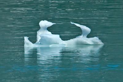 Iceberg - Glacier Bay, AK - 03