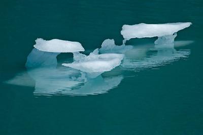 Iceberg - Glacier Bay, AK - 01