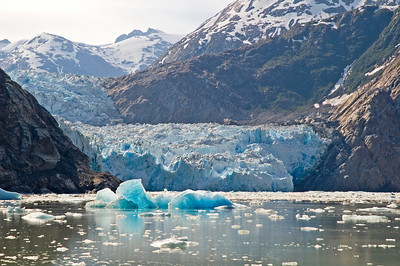 Sawyer Glacier - Tracy Arm, AK - 02