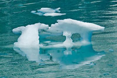 Iceberg - Glacier Bay, AK - 02