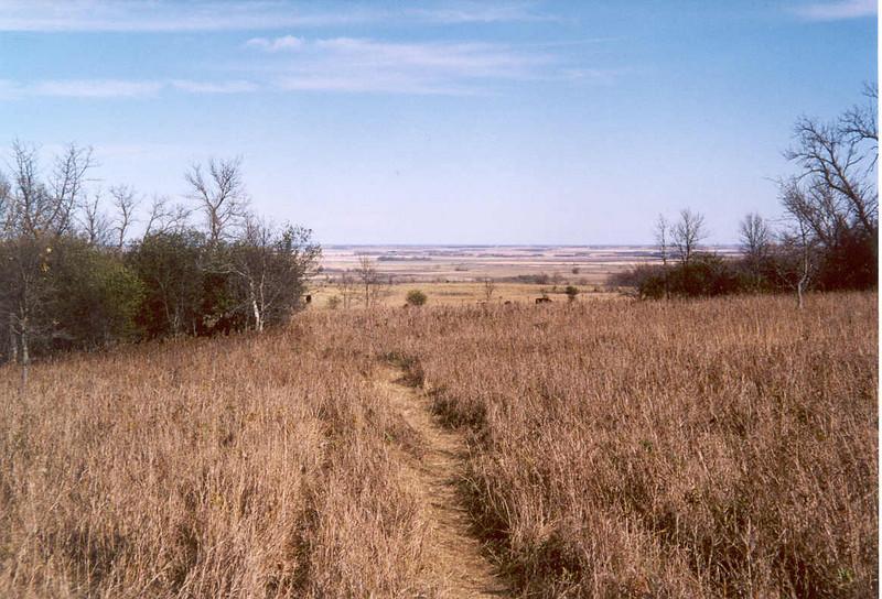 USA2003-074