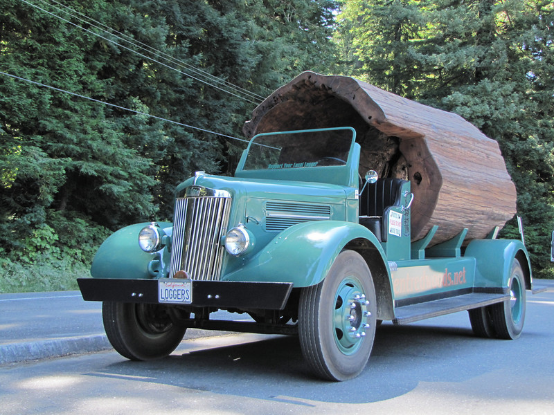 Redwood truck (Avenue of the Giants, Humboldt Redwoods State Park)