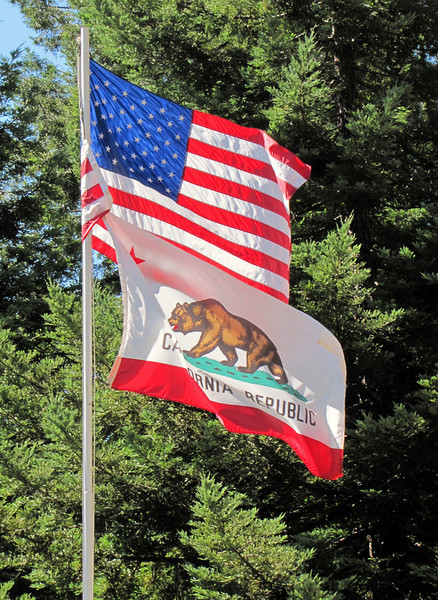American and Californian flag