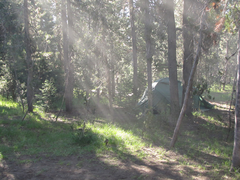 morning at  Lost Creek Campsite in Crater Lake National Park