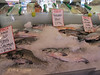 Pike Place, Fish Market, Seattle