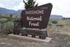 Near Cody, Shoshone National  Forest