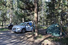 Campground, North of Jackson Lake.
