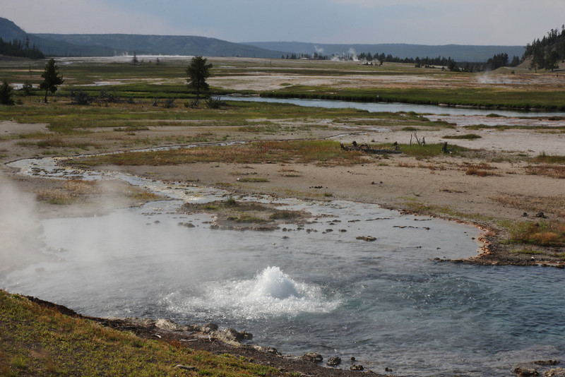 Norris Geyser Basin.