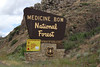 Medicine Bow National Forest.