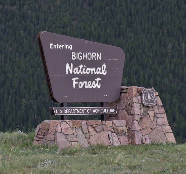Sign Bighorn National Forest.