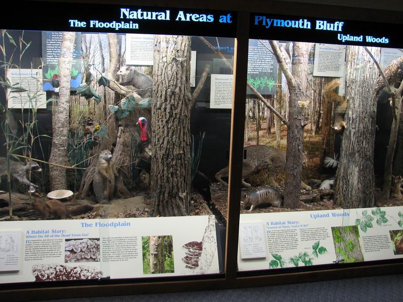 Plymouth Bluff Nature Park (Tenn - Tom waterway)