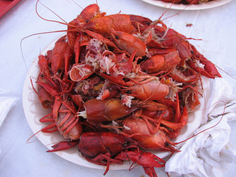 Crawfish BBQ (Pine Grove Arts Festival, EMCC, Scooda,MS)