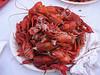 Crawfish BBQ (Pine Grove Arts Festival, EMCC, Scooda,MS)