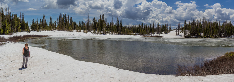 Snowy Range Area, W of Laramie, Medicine Bow Mountains