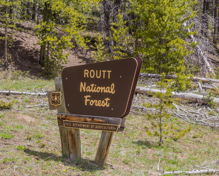 Routt National Forest, Colorado