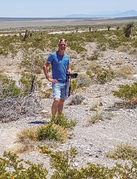 Desert N of Las Vegas, way 95, Nevada