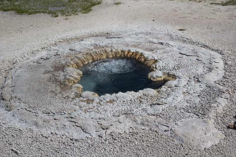 Upper Geyser Basin, Yellowstone N.P., Wyoming