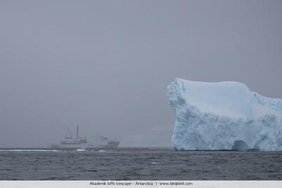 Akademik Ioffe Icescape - Antarctica