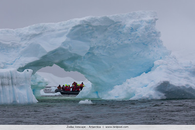 Zodiac Icescape - Antarctica