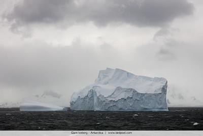 Giant Iceberg - Antarctica