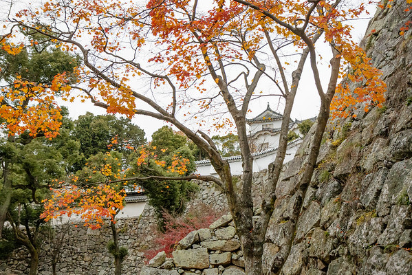 "December 12, 2015 Shirasagi-jō ""White Heron Castle"" Himeji, Japan _MG_1747"