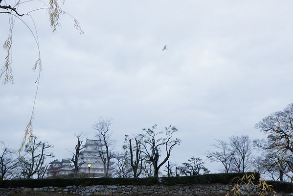 "December 12, 2015 Shirasagi-jō ""White Heron Castle"" Himeji, Japan _MG_1782"