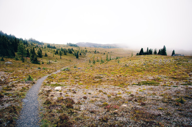 We started our run at the top of the Sunshine Village gondola.  Rain at the bottom turned into wet snow at the day lodge, and full out snow as we climbed towards the Great Divide.  Once we were up in Sunshine Meadows, the snow had let off.  The views were limited but still beautiful.