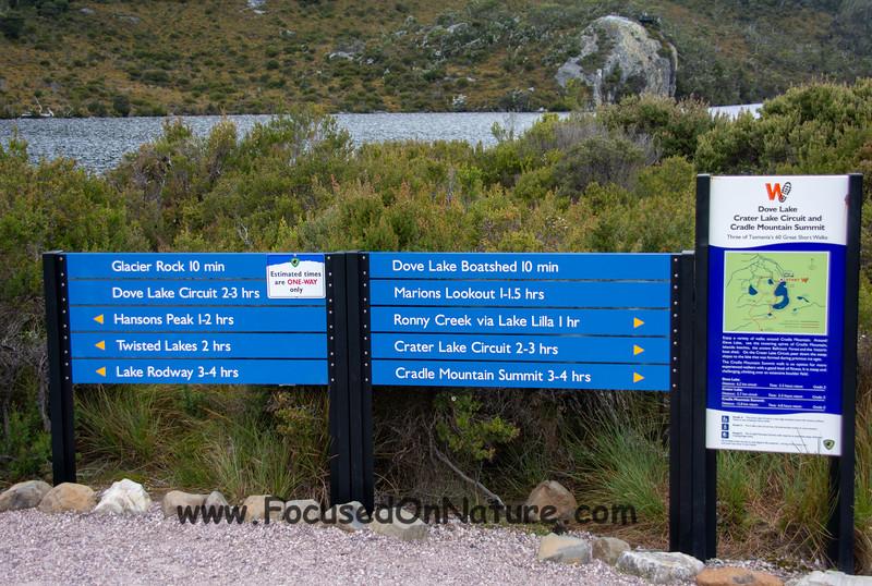 Dove Lake hiking options