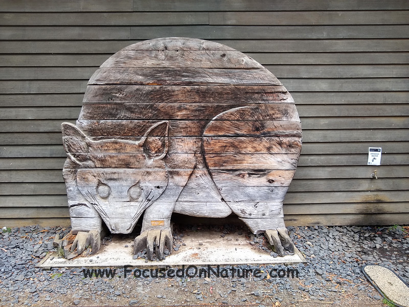 Mt Field visitor center carving