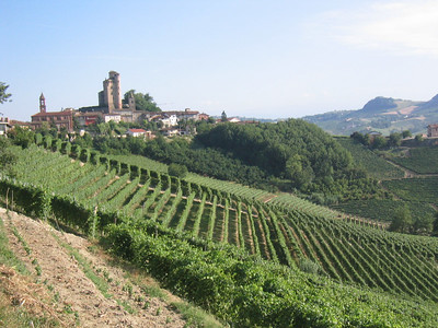 Barolo Wanderings, Italia 2006