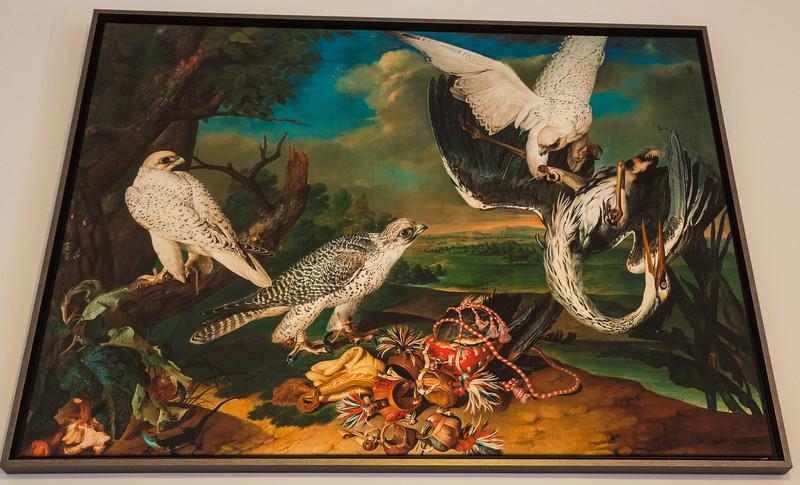 falconry museum