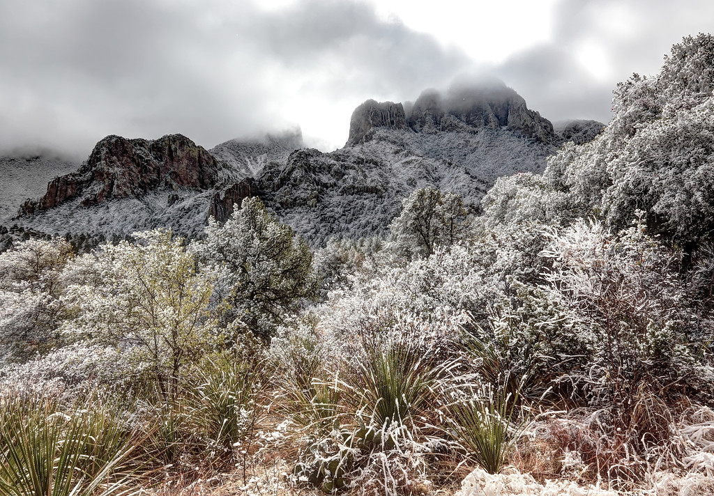 When we arrived 12-25, we saw a rare snowfall in Big Bend
