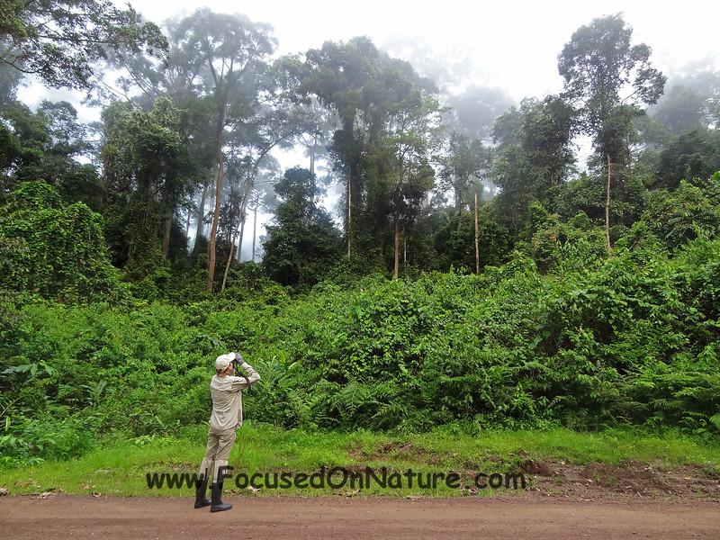Borneo Attire
