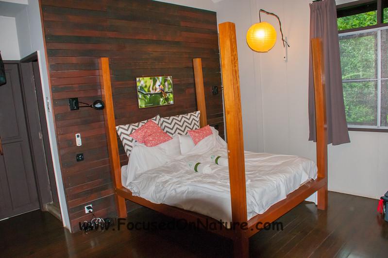 Room At Sepilok Forest Edge Resort