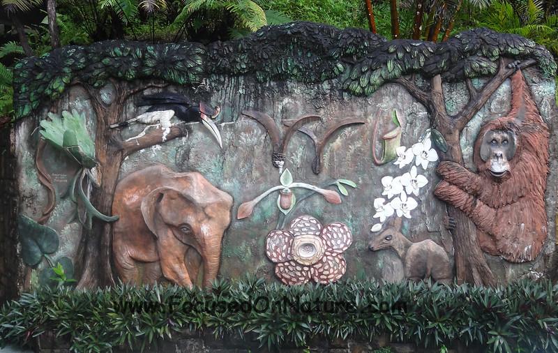 RDC Wall