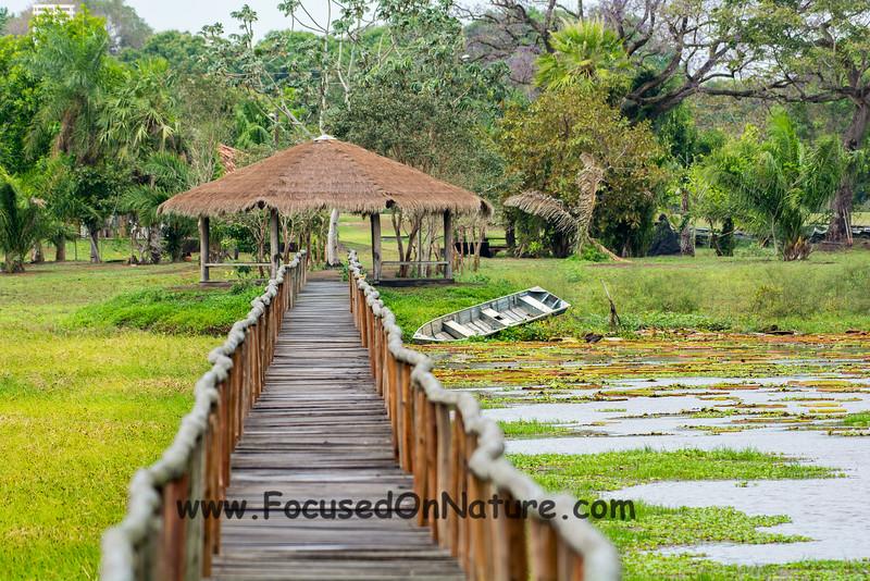Hotel Pantanal Norte Boardwalk