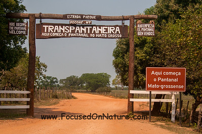 Gateway to the Pantanal