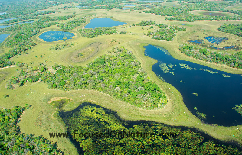 Pantanal from Above