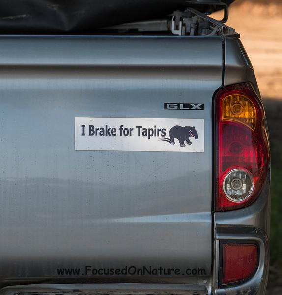 Everyone Should Brake for Tapirs