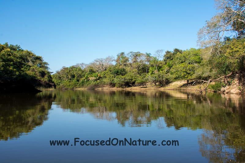 The Rio Negro